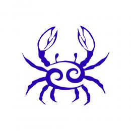 Kişiye Tekneye Yatlara Özel Yengeç Burcu Logo Yazısı Sticker Yapıştırma 100x20cm