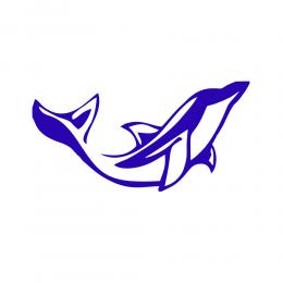 Kişiye Tekneye Yatlara Özel yunus  Logo Yazısı Sticker Yapıştırma 100x20cm