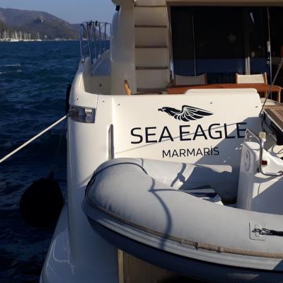 Tekneye Yat'a Özel Sea Eagle Çalışması Sticker Yapıştırma 80x50cm