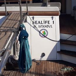 Tekneye Yat'a Özel SeaLife Çalışması Sticker Yapıştırma 100x50cm