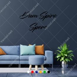 El Yazısı İle Yazılmış Dum Spiro Spero Duvar Yazısı Sticker 60x33cm