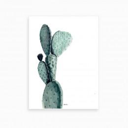 Duvar  İçin Resim Kaktüs  35x25 cm