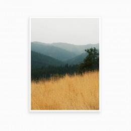 Duvar  İçin Resim Sazlıklar ve Orman 35x25 cm
