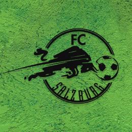 Firmaya Özel FC Salzburg Spor Klübü Dekarosyon İçin Metal Saç Tabela  60x40 cm