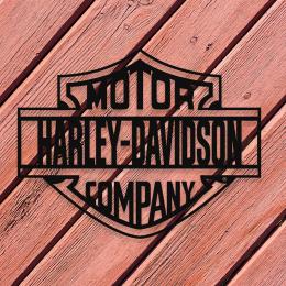 Firmaya Özel Harley Davidson Motor Metal Tablo Tabela 50x40 cm