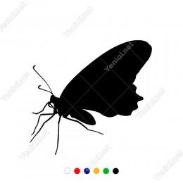 Sola Doğru Bakıp Uçmaya Çalışan Yan Görünüm Kelebek Sticker