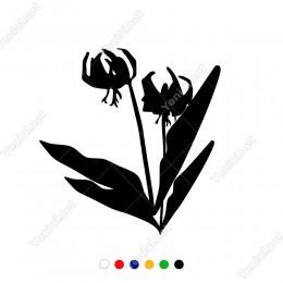 Dört Yapraklı İki Dallı Begonya Çiçeği Sticker