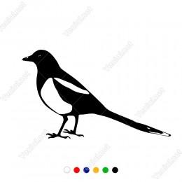Arkasına Doğru Dönük Uzun Kuyruklu Kuş Sticker