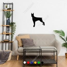Ayakları Geride Duran Dikkatli Doberman Köpeği Sticker