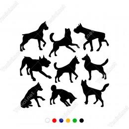 Birbirleri İle Oynayan Hepsi Farklı Köpek Sticker