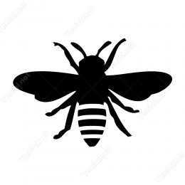 Böcek Arı Sticker Yapıştırma Sticker