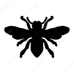 Böcek Sticker Etiket Yapıştırma