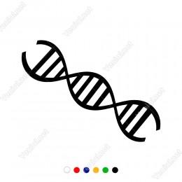 DNA Yapısı Modeli Şekli Sticker