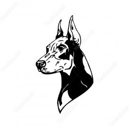 Dobermen Köpeği Stickerı Yapıştırması