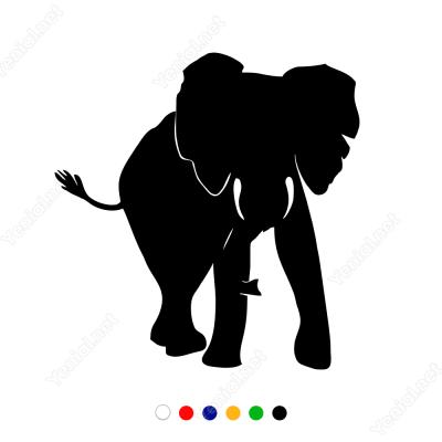 Fil Elephant Sticker Yapıştırma