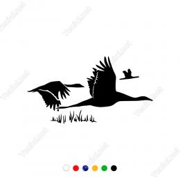 Göçmen Kuşlar 2 Sticker Yapıştırma