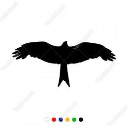 Kanatlarını Açmış Yukarıya Doğru Uçan Kartal Sticker