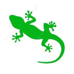 Kertenkele Hayvanlar Logo Ve Semboller Sticker Yapıştırma