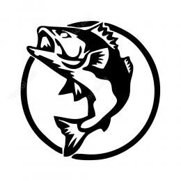 Köpek Balığı Stickeri