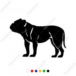 Sakin Şekilde Duran Köpek Sticker