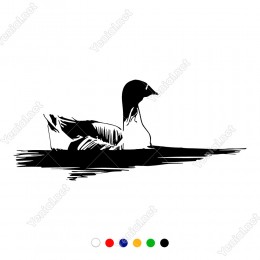 Suyun Derenin İçinde Kuğu Gibi Süzülen Ördek Sticker