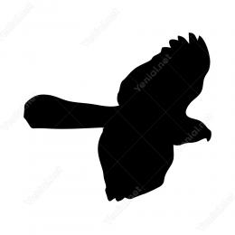 Uçan Kuş Sticker Yapıştırma